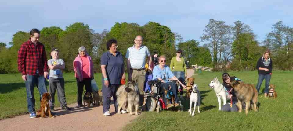 Group of people and dogs posing for a picture