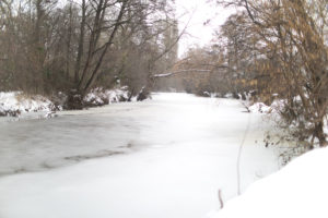 A frozen river overhung with trees.