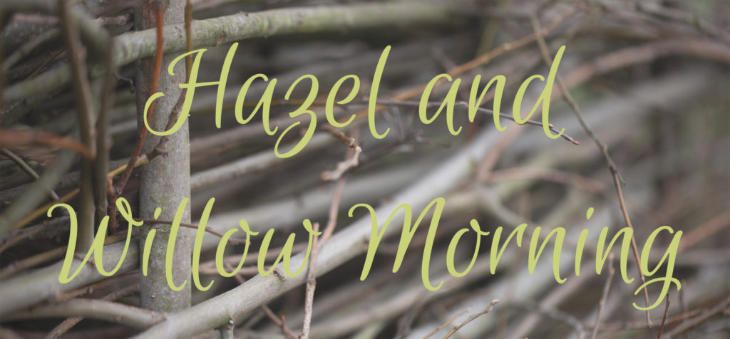 Woven stick background with the words Hazel and Willow Morning