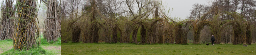 Living willow structure sitting in a field. Inset detail of column with newly planted branches.