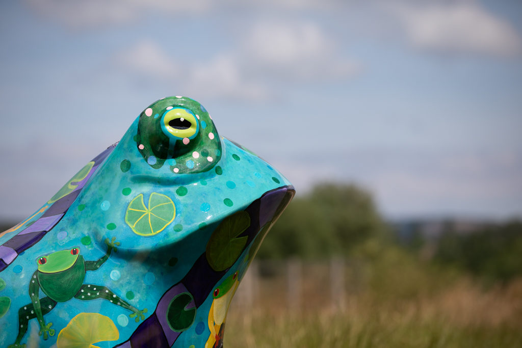 Detail of the face of the toad statue with blue sky and clouds in the background.