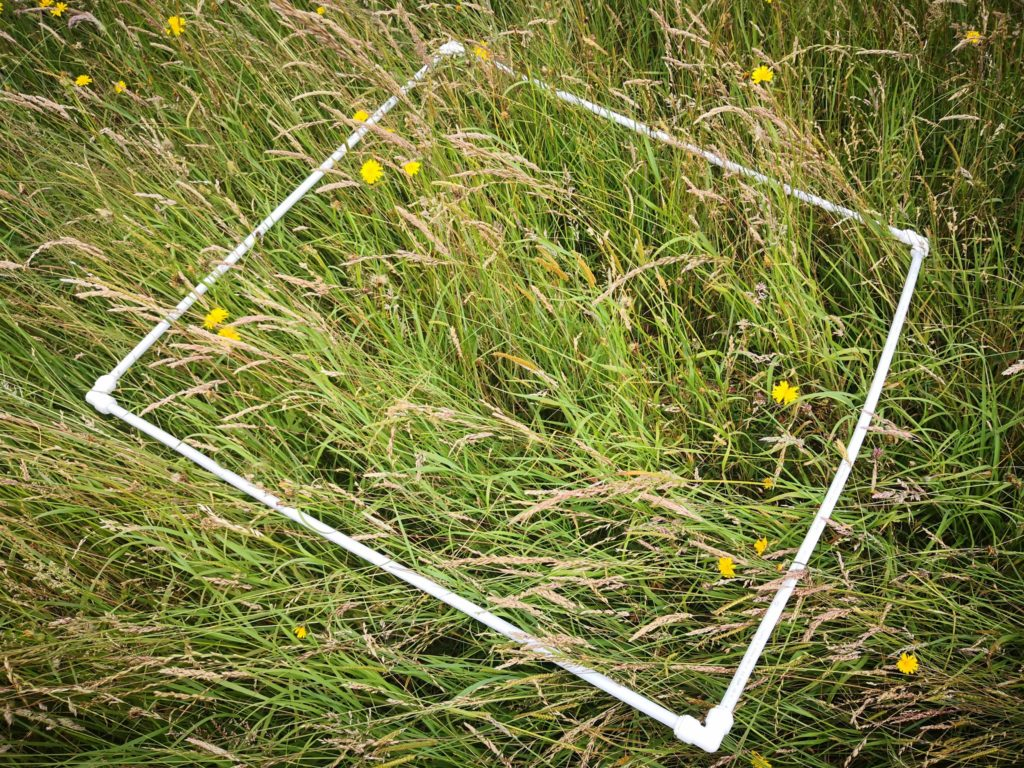 White plastic pipes making a square, lying on long grass.